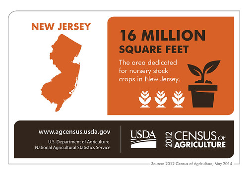 New Jersey really is the Garden State –  the state doubled its square footage for nursery stock crops in between the 2007 and the 2012 Census of Agriculture.  Check back next Thursday for another state profile.
