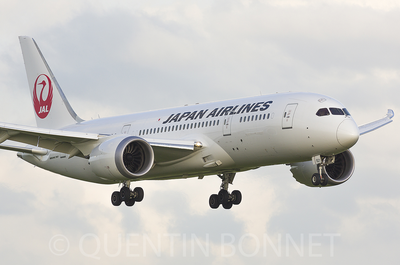 Japan Airlines Boeing 787-8 Dreamliner JA821J