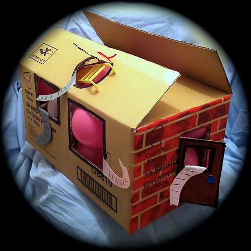 Week 21 Boxes Back of Elephant house