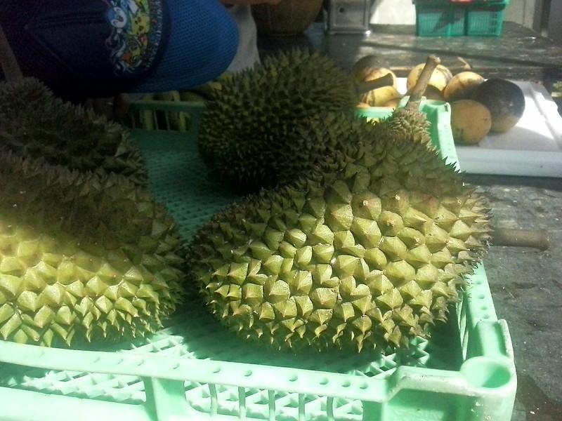 Durians in season