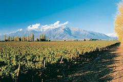 Mendoza: Promueven el desarrollo turístico y productivo del Valle de Uco