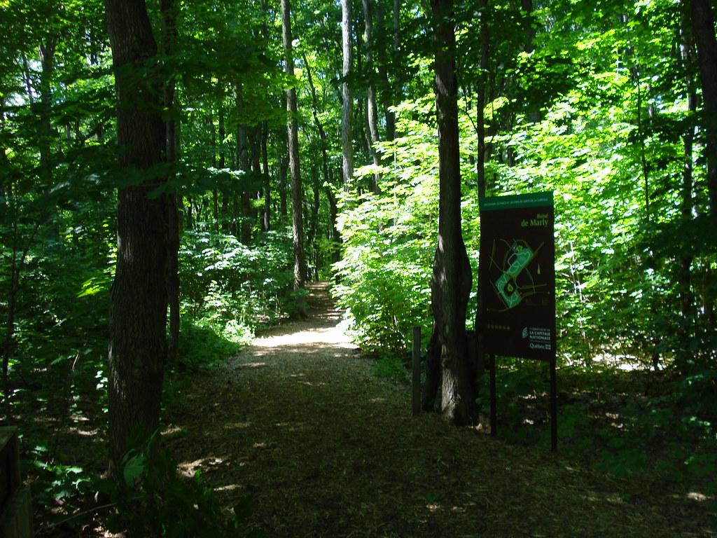 Le bois de marly commission de la capitale nationale for Espace vert quebec
