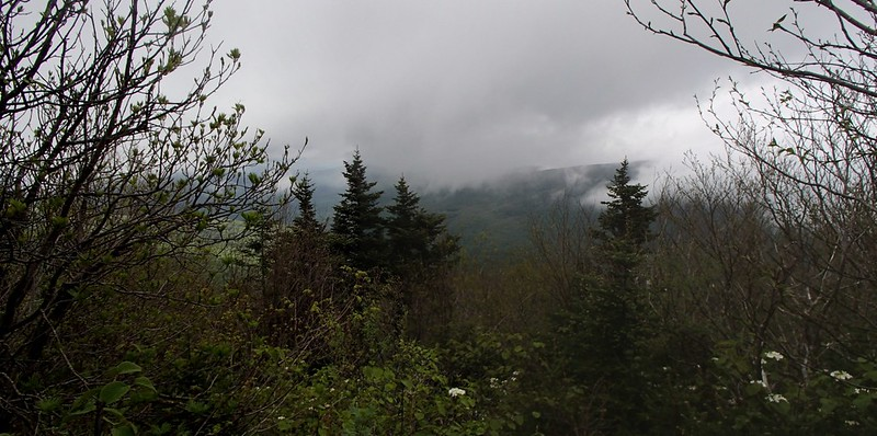 All we got was a brief view of clouds hovering over Fir Mountain from the Doubletop Summit