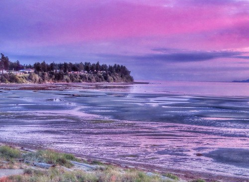 pink blue color colour beach water colors beautiful sunrise canon onthebeach colours purple earlymorning kissedbythesun vancouverislandbccanada sx50