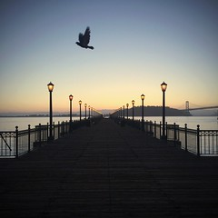 The Piers of San Francisco