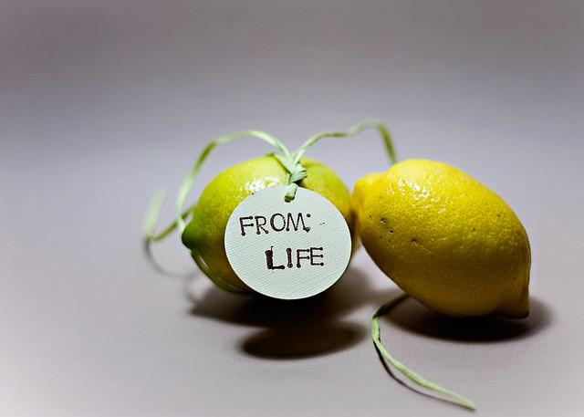 365-lemons