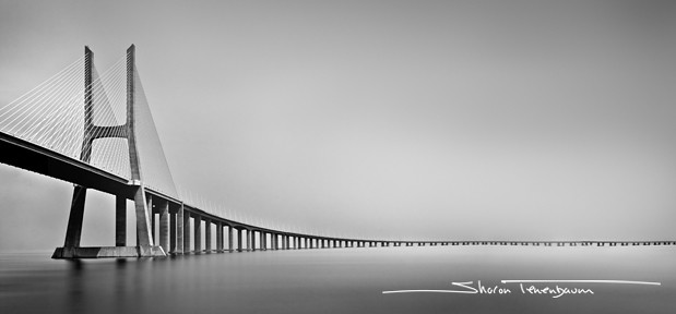 Vasco de Gama Bridge #2 LONG