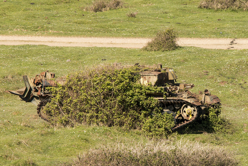 13966507854_81638c4b12_c des tanks avalés par la nature comme si la guerre n'avait jamais eu lieu