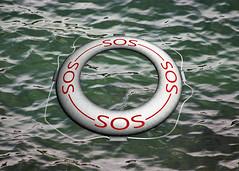 vehicle(0.0), watercraft rowing(0.0), boating(0.0), boat(0.0), lifebuoy(1.0),