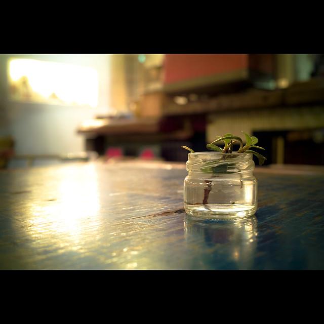 water-jar-light-composition