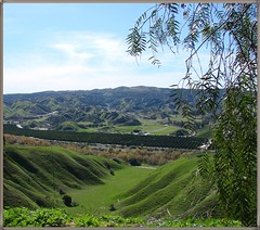 San Timoteo Canyon, Redlands, CA 8-2011