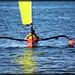 Sail-fishing by Loops666