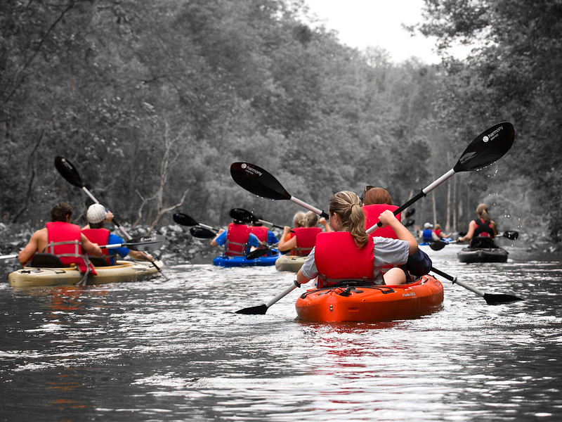Guided kayak tour Silver River