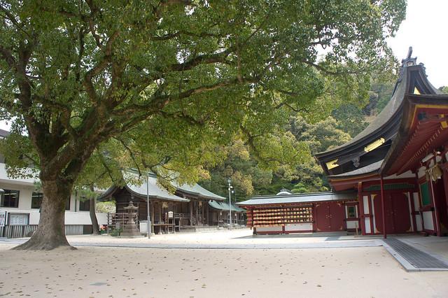 2012-kyushu-647