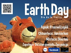 Earth Day Poster (with indigenous languages used at the Pochimilco Market, Oaxaca)
