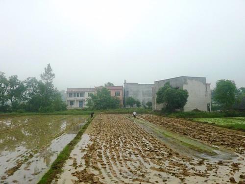 C-Hunan-Shaoshan (17)