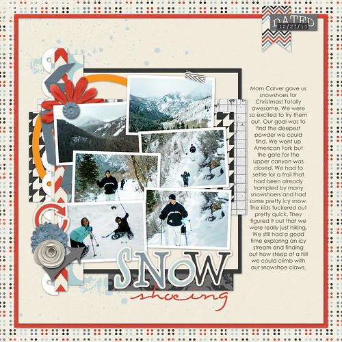 1 snowshoeing