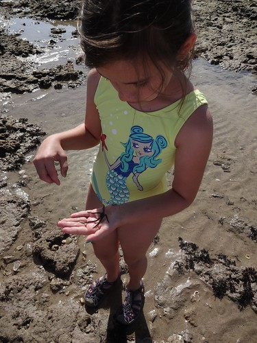 Madeline and the sea star