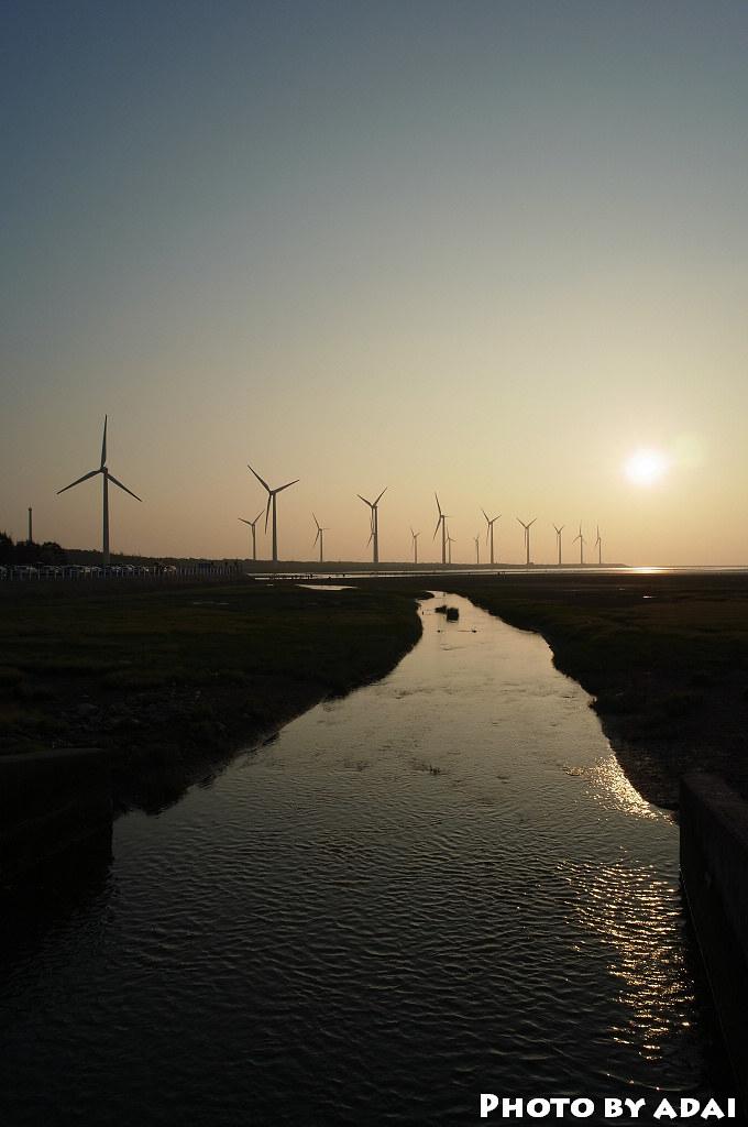 2011.6.4  高美濕地