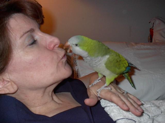 Kisses for mommy