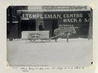 Ottawa Dairy Co's grey mare and sleigh no.15., on Albert St., Ottawa 1910
