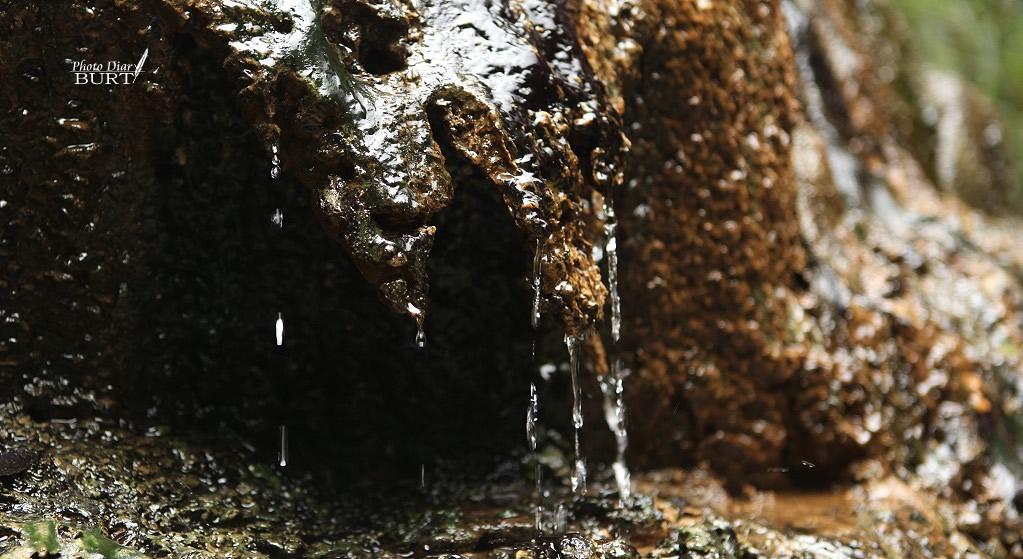滴溫泉水的岩壁