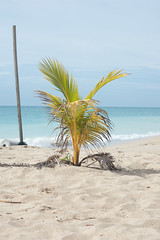 Turner Beach, Antigua