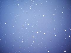 Snow, Nov/Dec 2010