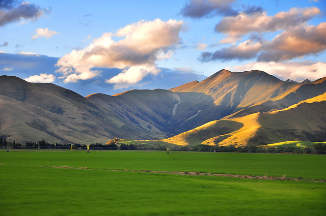 NZ Landscape from the van