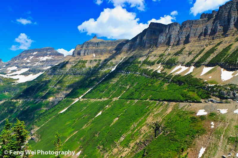 summer landscape garden wall glacier national park flickr photo sharing