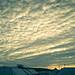 Small photo of Aalborg skies
