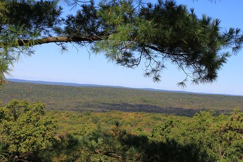 nature newjersey hiking wildlife nj stokes appalachiantrail sunrisemountain sussexcounty stokesstateforest stokesforest sunrisemt