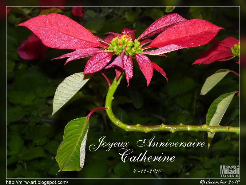 Joyeux Anniversaire Catherine Happy Birthday Catherine Flickr