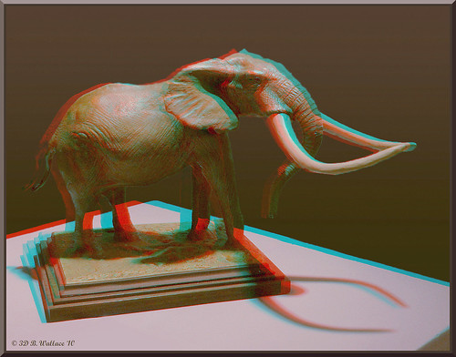 sculpture elephant art effects stereoscopic 3d md quality brian maryland anaglyph ps indoors stereo wallace inside easton stereoscopy stereographic ewf brianwallace stereoimage stereopicture
