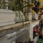 Decorated and Cared for Memorials at Santiago's Cemetario General