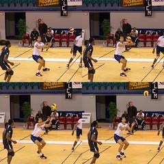 Réception au volley-ball