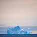 Iceberg by stacylankford