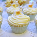 Gluten free Cranberry & almond cupcakes
