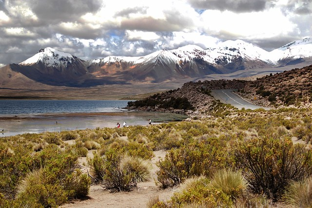 Carretera internacional en Lago Chungara - Chile