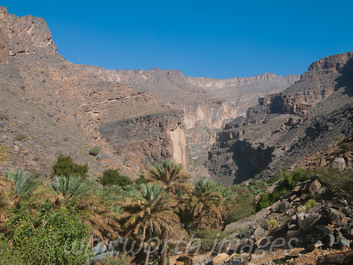 mountains nature palms wonder landscape outdoors desert middleeast canyon cliffs palmtrees arabia gorge tall arabian oman barren wadi arid steep datepalms wadighul arabianpeninsula aldakhiliyah aldakhiliyahregion alhajir wadiannakhur