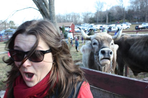 Fred the Ox Has Had Enough of Jen and Scares The Crap Out of Her