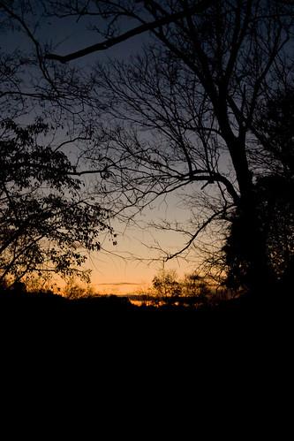 sunset art nature television photography photo video media knoxville outdoor hiking mark walk tennessee creative lewis professional production producer wildlifemanagementarea forksoftheriver wildernessforresttrail