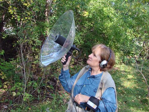 Laura recording birds