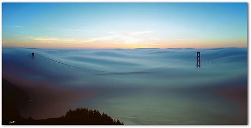 fog ggb sfmonring
