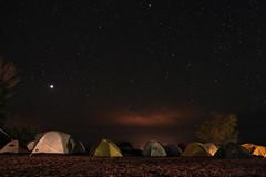 camp night stars