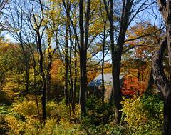 Morris County NJ Autumn 2010