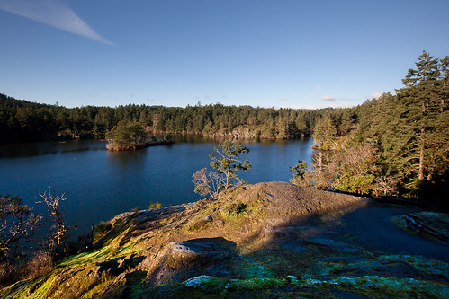 Perfection of the morning - Thetis Lake Park