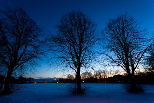 blue trees sky snow lund field night europe sweden silhouettes sverige scandinavia zweden ef1740mmf4lusm canoneos5dmarkii