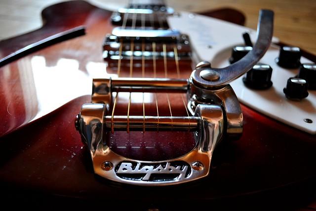 Photo:330 Bigsby By DeLerkim