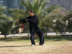 kung fu term(0.0), baguazhang(0.0), t'ai chi ch'uan(1.0), sports(1.0), martial arts(1.0), chinese martial arts(1.0),